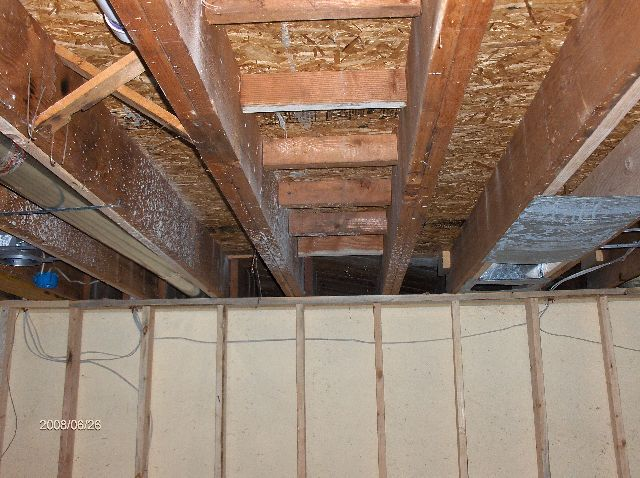 Remodeling-Whole-House-In-Southeastern-Michigan-Project-NapR1-101-Picture-8