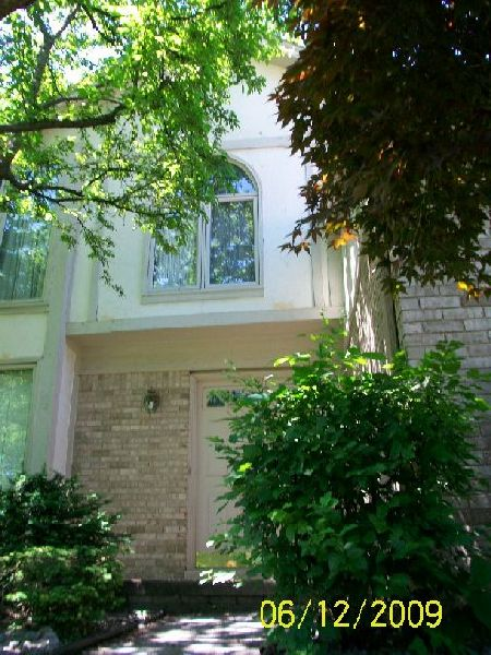 Replacing-Wall-Panels-Suffering-Water-Damage-From-Overgrown-Trees-Too-Close-To-The-House-ParR1-103-Picture-2