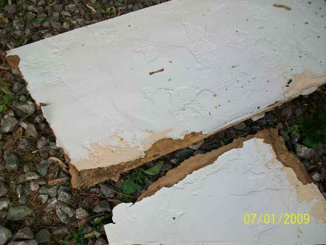 Replacing-Wall-Panels-Suffering-Water-Damage-From-Overgrown-Trees-Too-Close-To-The-House-ParR1-103-Picture-6